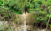Pont suspendu papouasie treck vallee du Baliem
