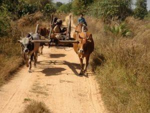 Pyay campagne birmane