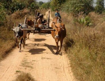 Pyay campagne birmane que faire en Birmanie?