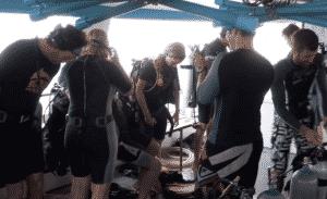 plongée Koh Tao