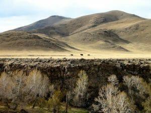 Yack montagne canyon mongolie