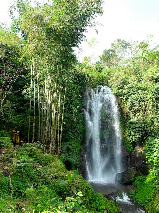 chutes d'eau bali indonésie