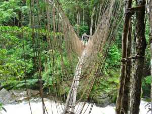 alex traverse pont suspendu vallée du baliem papouasie