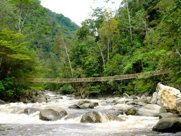vallée du baliem papouasie pont suspendu en cordage