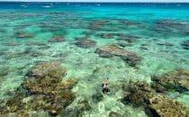 Alex palme masque tuba snorkeling baie de jinek lifu nouvelle calédonie