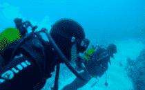 alex et pinto plongée sous marine nouvelle calédonie