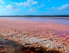 hutt lagoon lac rose australie