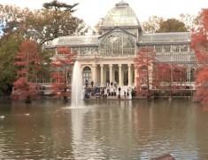 palacio de cristal parc du retiro madrid