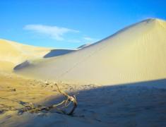 dune de sable cote ouest australie