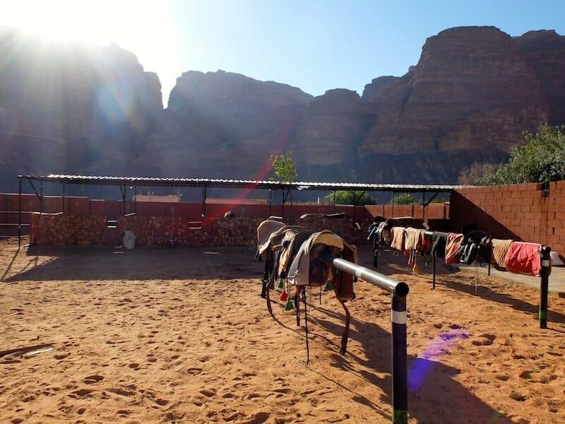 ecuries wadi rum jordanie