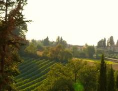 arriere pays toscane italie
