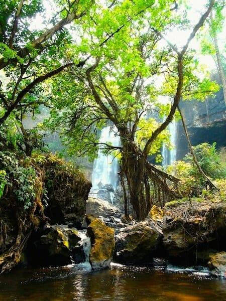cascade secrete au plateau des bolovens laos