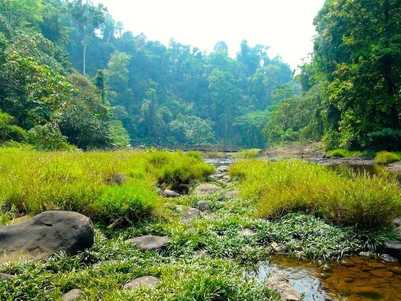 paysages bolovens laos