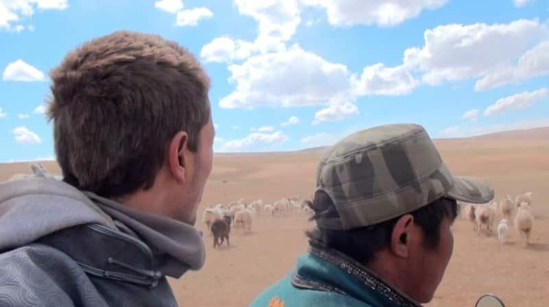 chez les nomades - Mongolie