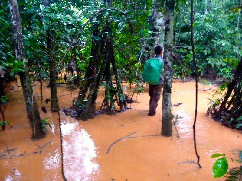 incroyable trek de survie en amazonie bolivie