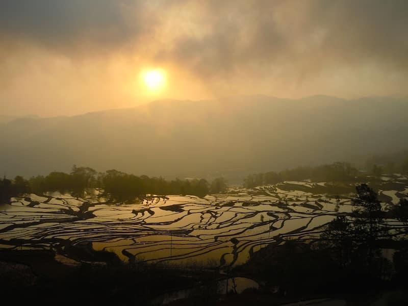 rizieres yuanyang incroyable chine