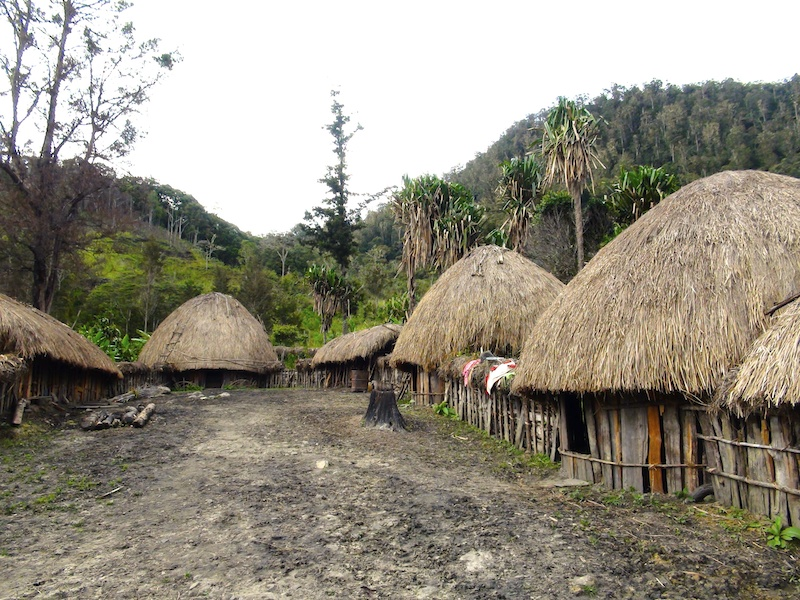 village papou vallee du baliem papouasie