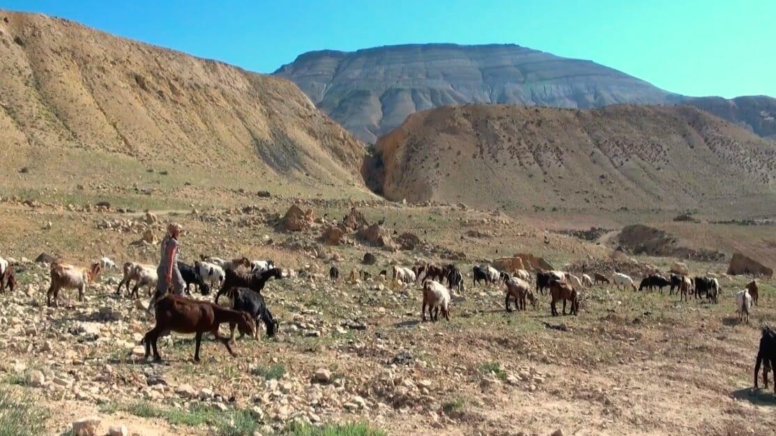 paysage inoubliable jordanie