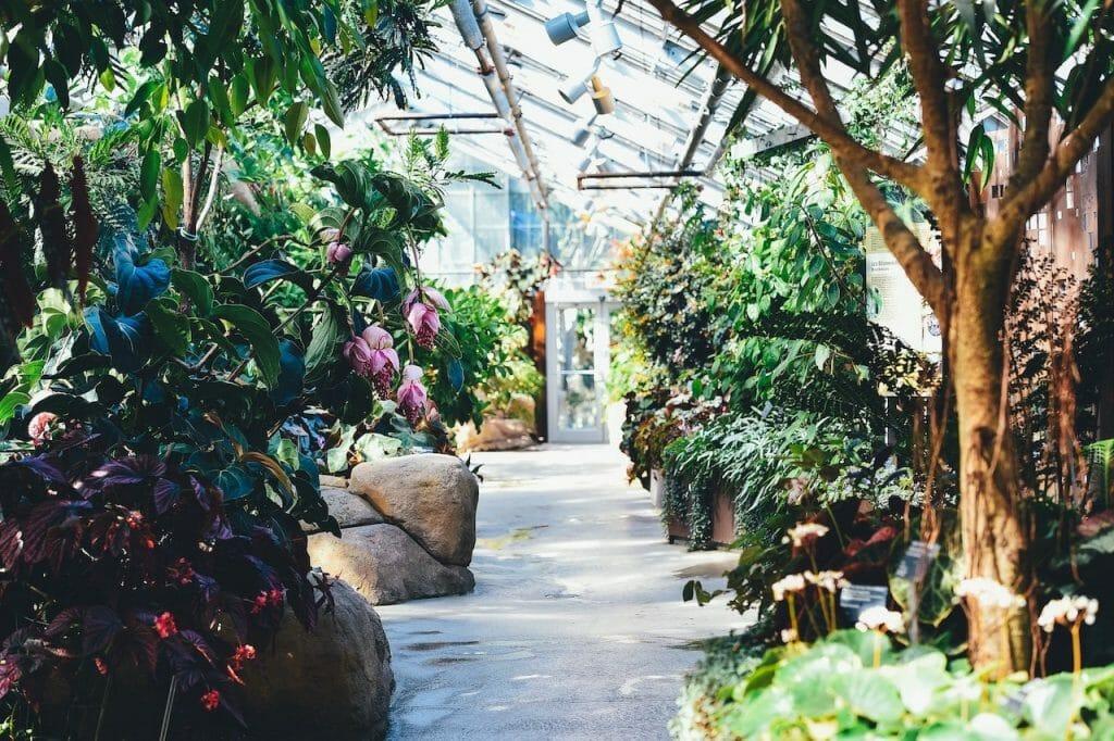 visiter montreal jardin botanique