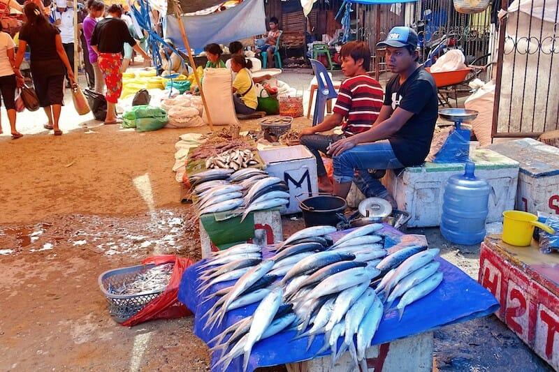 marché poisson rantepao