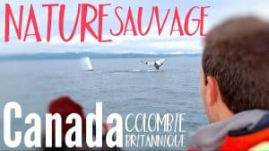 nature Colombie Britannique vignette