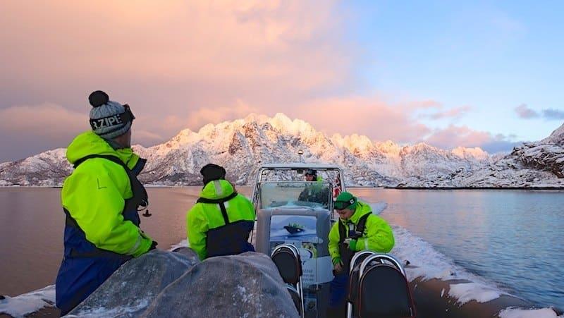 observation des aigles lofoten aurores boréales en Norvège