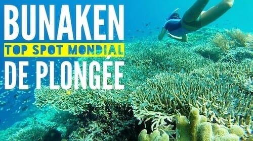bunaken indonesie plongeebunaken indonesie plongee