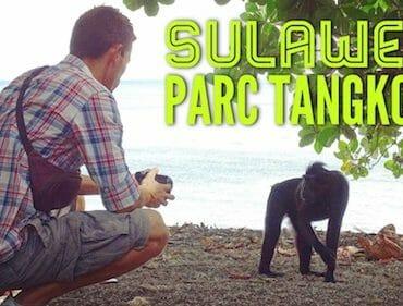 park-tangkoko-sulawesi