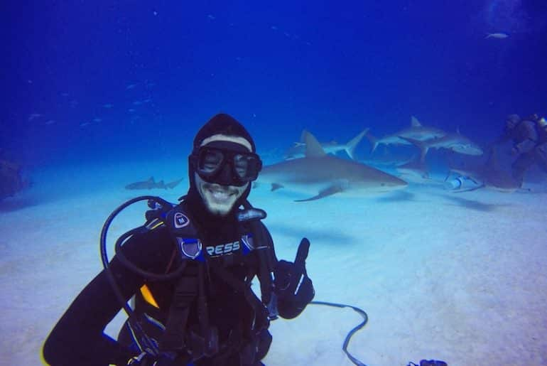 plongee requin grand bahamas
