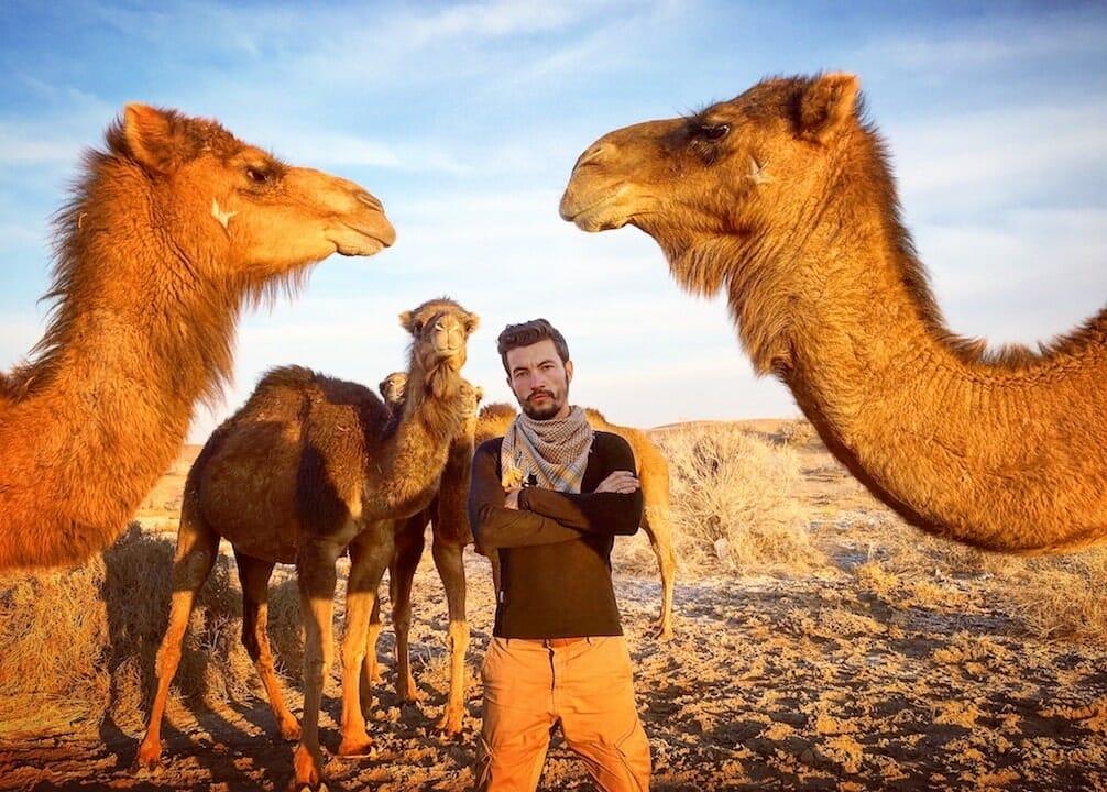 dromadaire voyage en iran