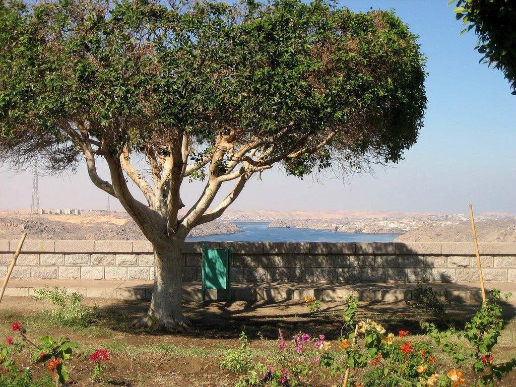 Vue depuis le haut barrage de Assouan