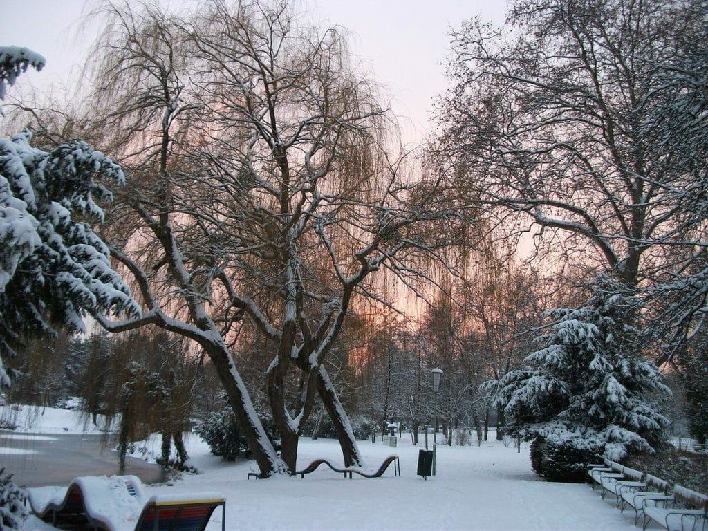 Neige sur la ville de Vienne