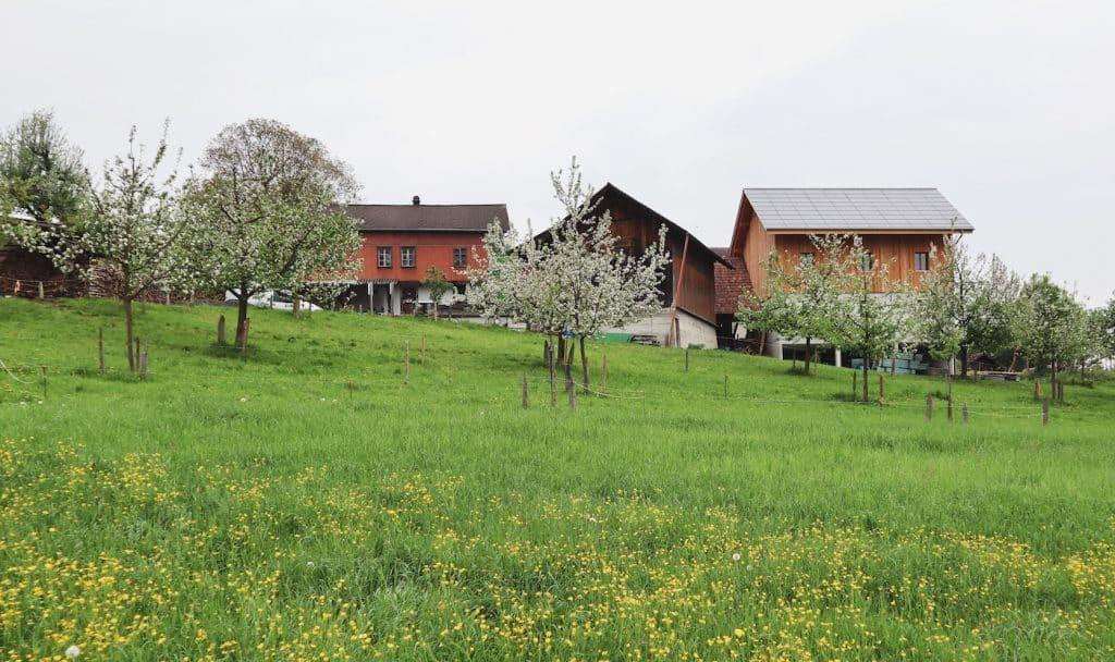 weekend en suisse a la ferme