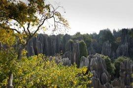 La forêt de pierres de Shilin