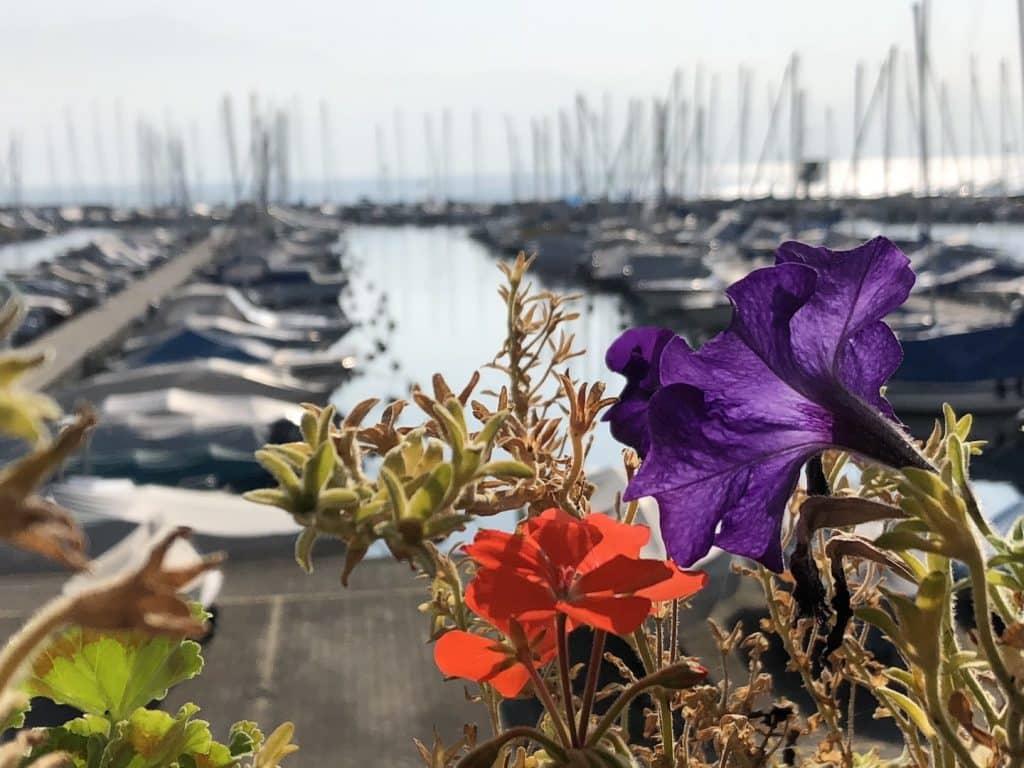 voyage en suisse quartier Ouchy lac léman