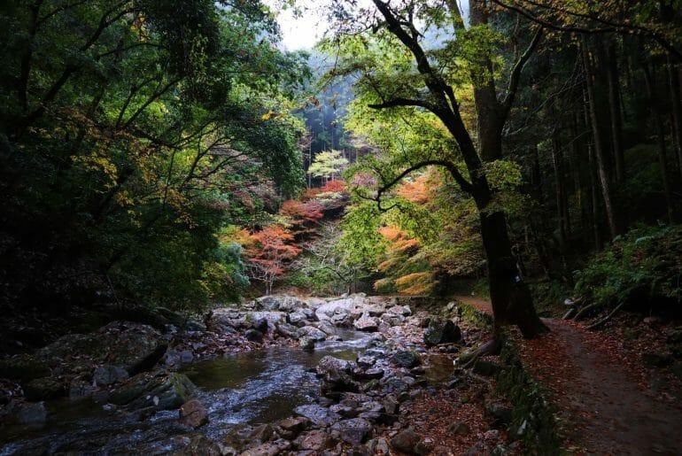 Voyage au Japon cascades d'Akame