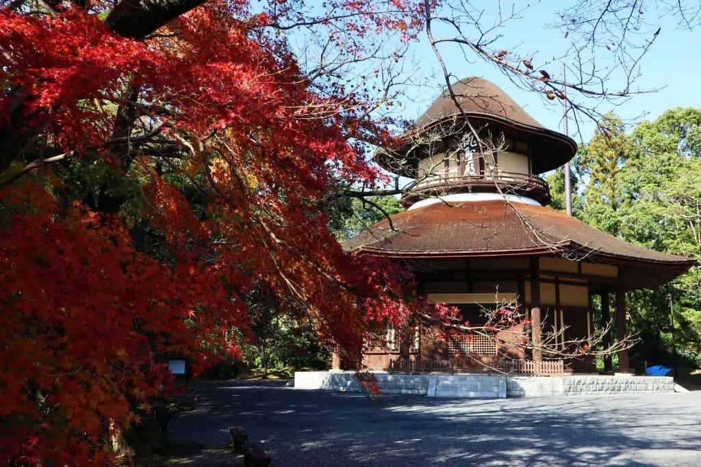 maison ninja voyage au japon