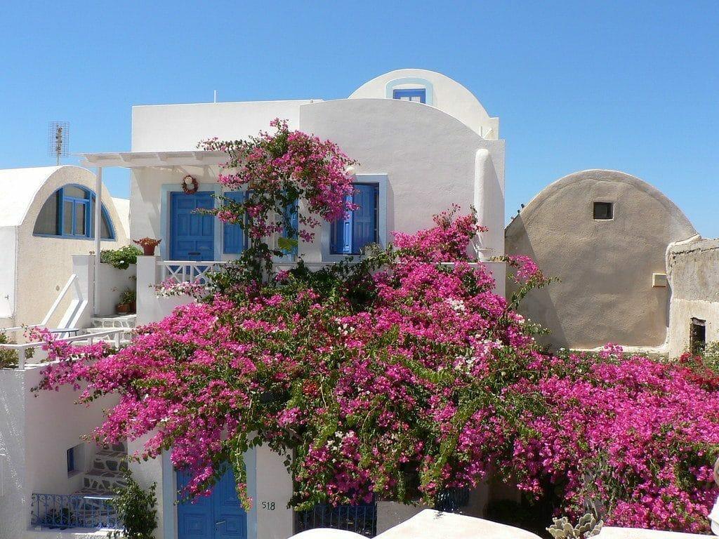 santorin ruelles maisons blanches