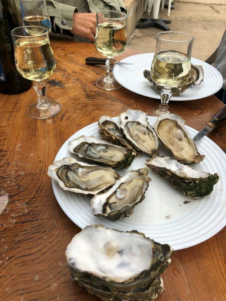 dégustation d'huîtres ostréiculteur faire en vendee