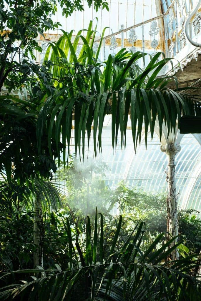 temperate house jardin kew gardens